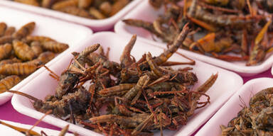 Insektensnack