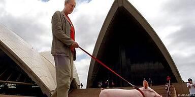 James Cromwell hat Schwein gehabt