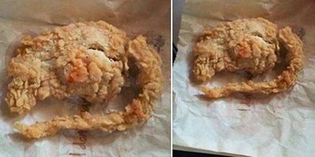 Frittierte Ratte bei KFC im Bucket?