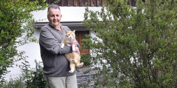 Katze soll 500 € Strafe zahlen