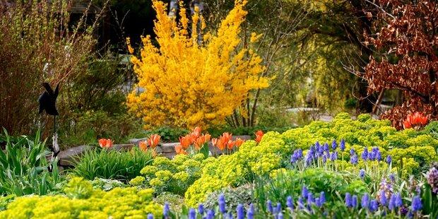 Garten - Wege zur Natur