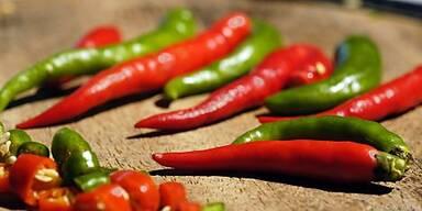 Kleine getrocknete Chilis zum Nachtunen