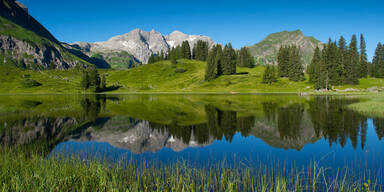 Top-Quote und Sieger aus Vorarlberg
