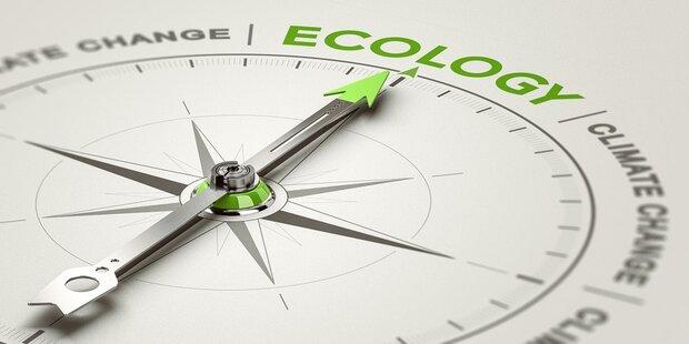 Sechs Tipps für ein umweltfreundliches Büro