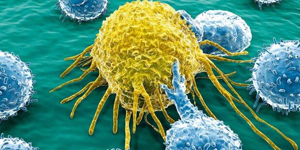 Krebs: Früherkennung kann  leben retten!