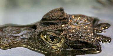 Krokodil_Reuters