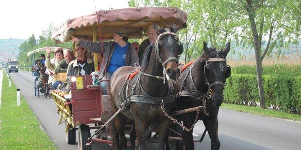 Von den Söhnen Mannheims zum Gauderfest im Zillertal