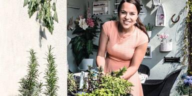 Kräuter und Gemüse sebst anbauen