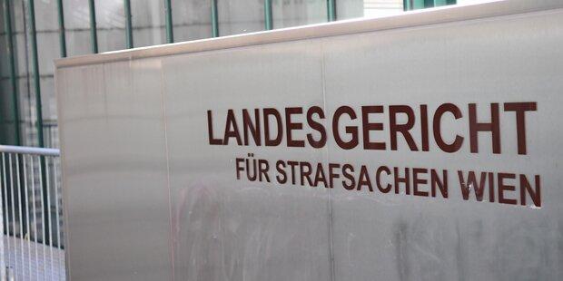 Tritte, Schläge, Spuckattacken: Skurriler Prozess in Wien