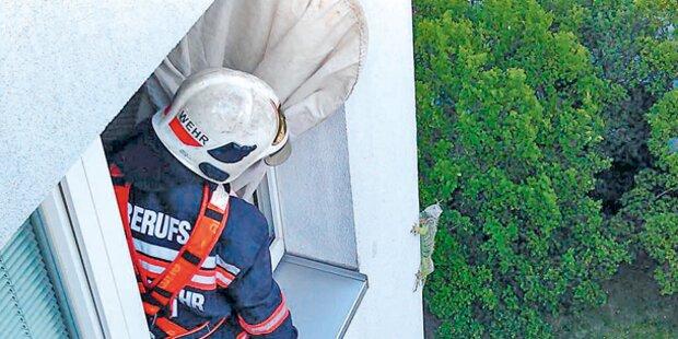 Leguan aus dem 16. Stock gerettet