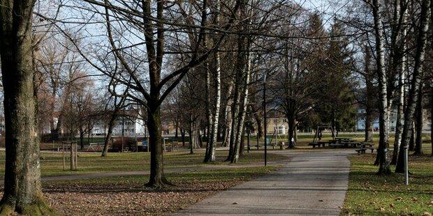 Lehener Park soll sicherer werden