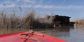 Leiche aus Neusiedler See gibt weiter Rätsel auf