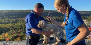 Hund steckte 5 Tage in enger Felsspalte fest