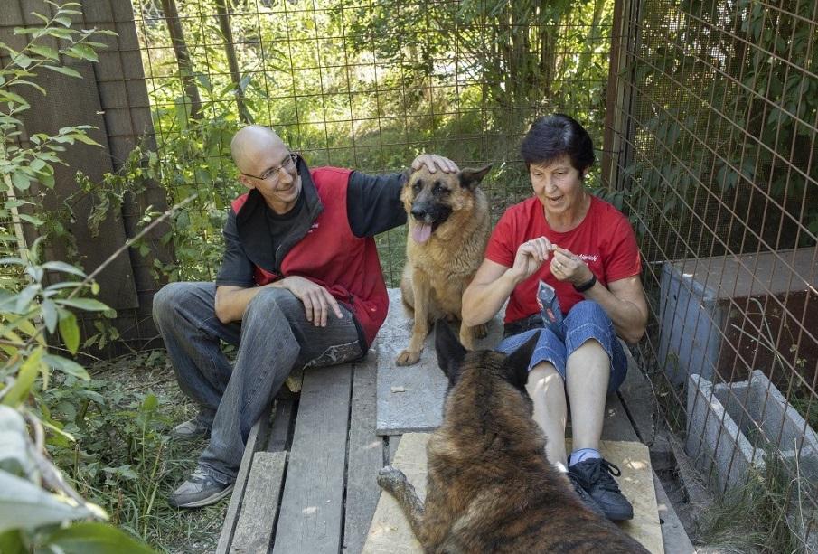 Lucy, Jerry-Lee 2 - Tierschutz-CH - Unsere Tiere - Gut Aiderbichl - Sendung 01092019