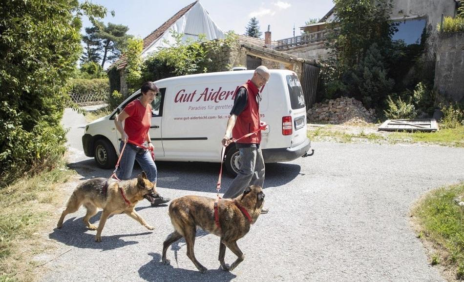 Lucy, Jerry-Lee 1 - Tierschutz-CH - Unsere Tiere - Gut Aiderbichl - Sendung 01092019