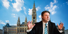 Michael Ludwig: Antrittsrede vor der Wahl