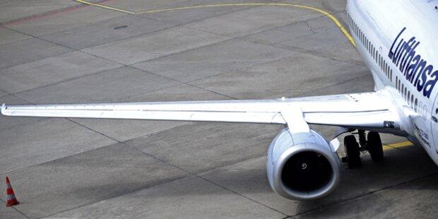 Vogelschlag: Lufthansa-Airbus muss notlanden