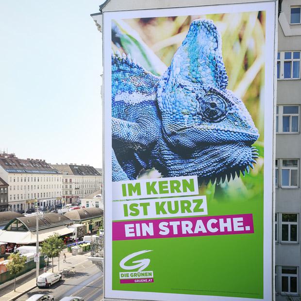 Grüne Wahlplakat