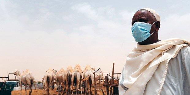 Todes-Virus aus Wüste in Wien