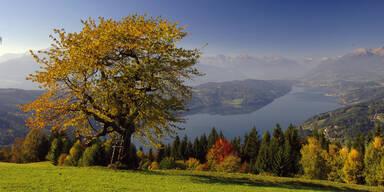 Maier Zanker - Panorama Herbst