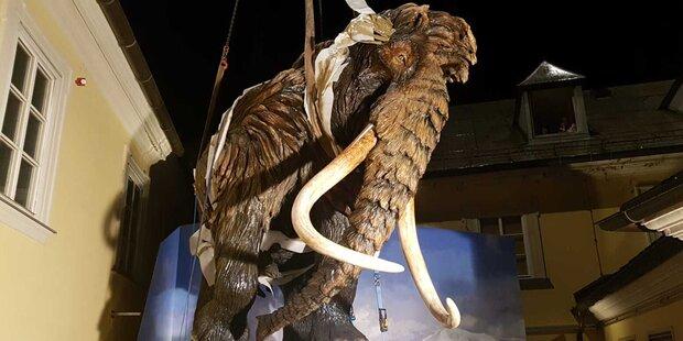 Mammutprojekt beim Haus der Natur