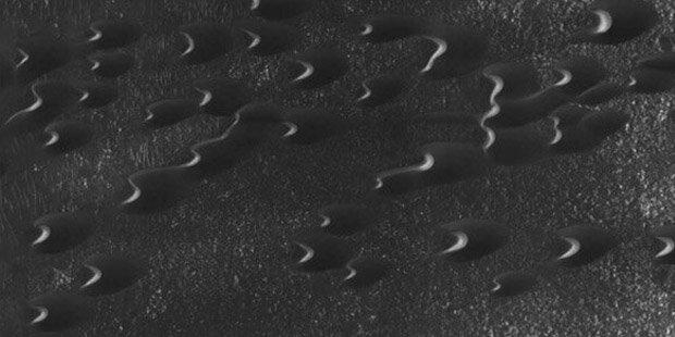 Wurden auf dem Mars Aliens entdeckt?