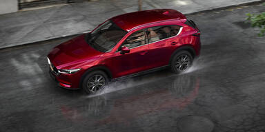 Millionen-Schaden: Polen-Duo stahl 50 Mazda