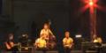 Austro- Musiker gehen auf die Barrikaden!