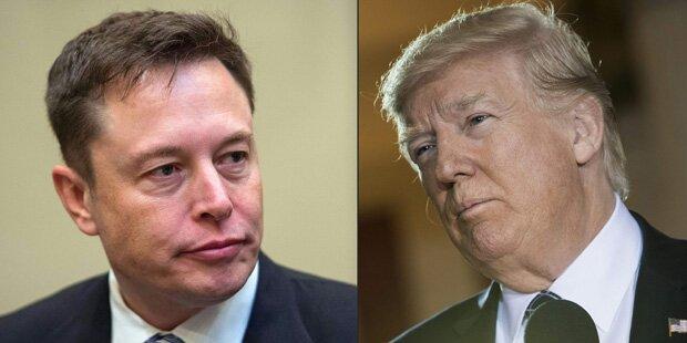 Musk will Trump nicht länger beraten