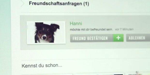 Social Petwork: Facebook für Tiere