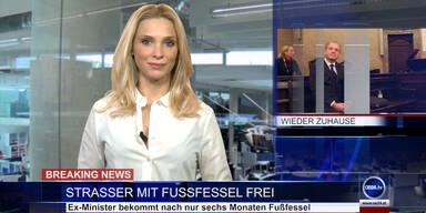 News TV: Ex-Minister Strasser mit Fußfessel frei