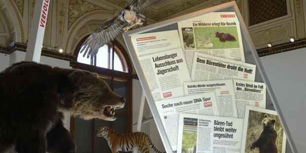 Artensterben: NHM sieht dem Tod ins Auge