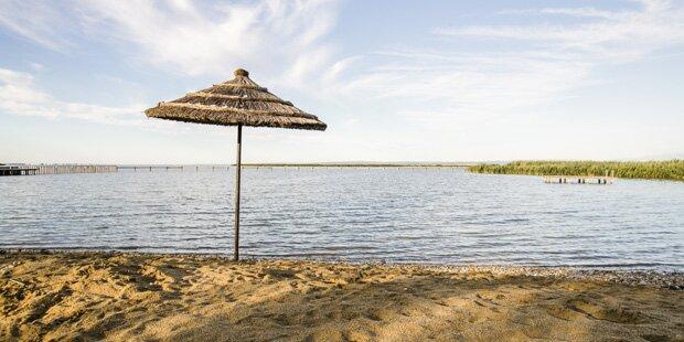 Naturschützer formieren sich gegen Großprojekt am Neusiedler See