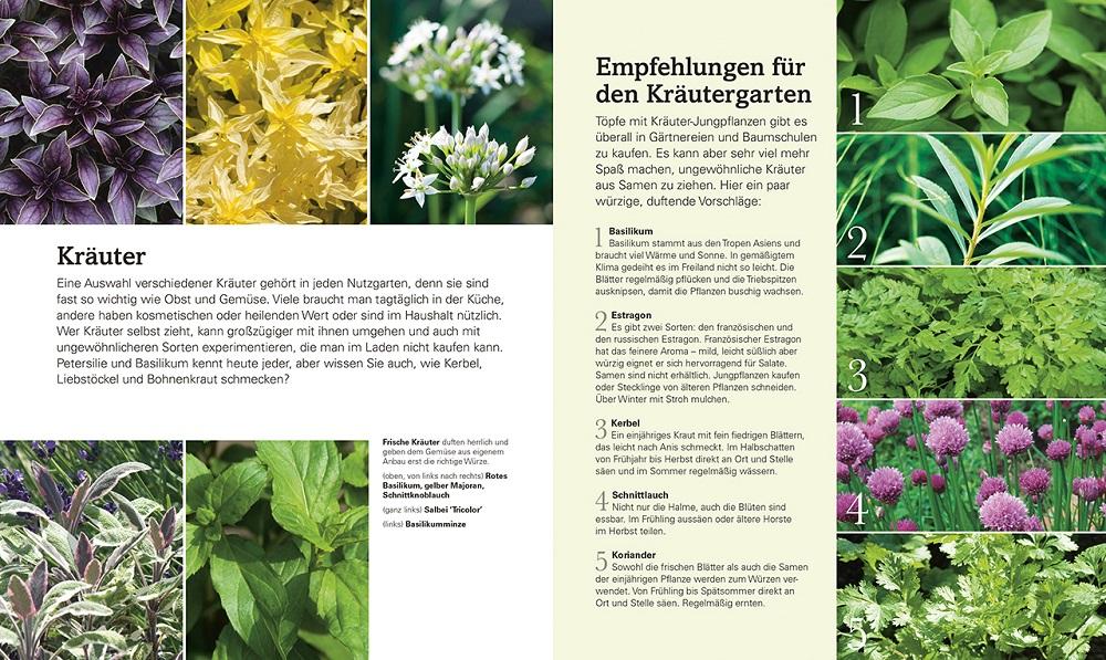 Der Nutzgarten - NaturLust - Garten-CH - Buchtipp - Dorling Kindersley - Auszug 3