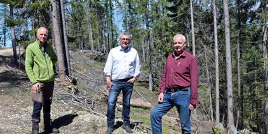 Katastrophenfonds hilfe für Waldbauern