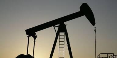 OPEC will vorsichtig agieren