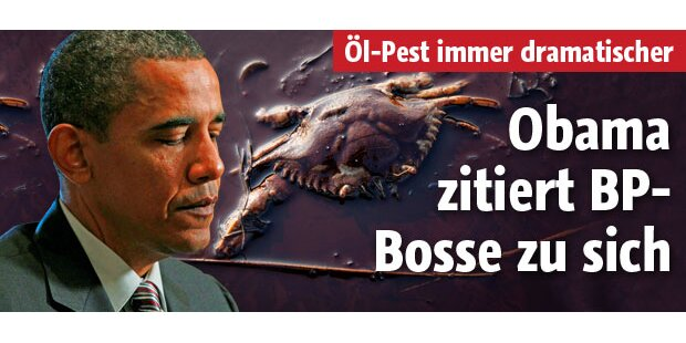 Obama holt sich BP-Schmutzfinken