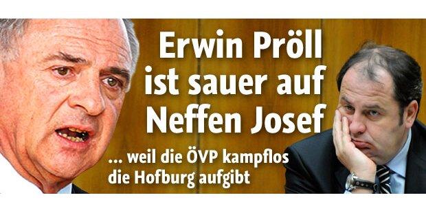 Hofburgwahl: Aufstand in der ÖVP