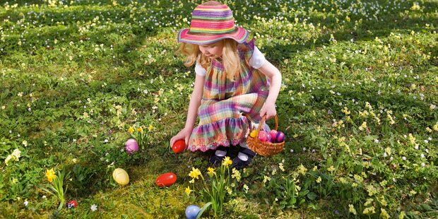 Der große Eier-Report zu Ostern