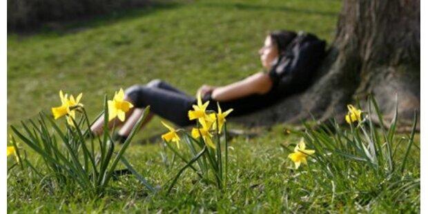 Strahlender Sonnenschein zu Ostern
