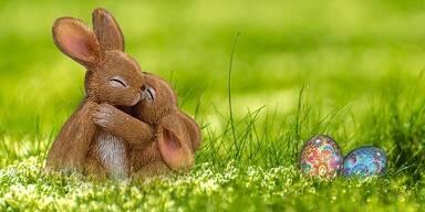 Ostern - Hasen, Wiese