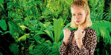 Dschungelcamp 2021 Gagen