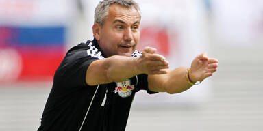 Pacult soll Dynamo Dresden retten