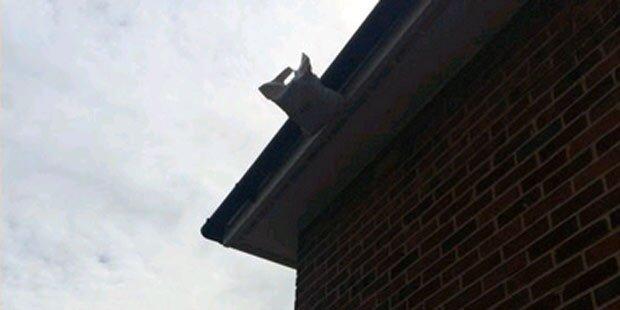 Zusteller hinterlässt Paket ... auf dem Dach