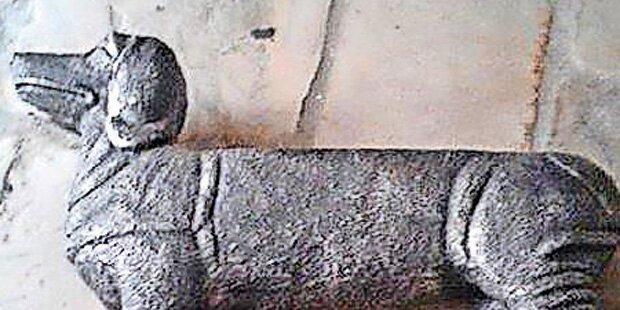 Irrer wirft Hunde-Statue auf Autodach