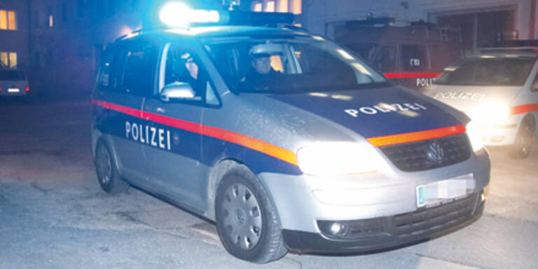 Schwechat: Einbrecher auf frischer Tat ertappt
