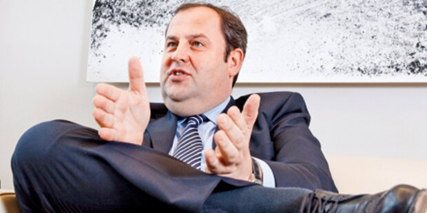 ÖVP plant Coup für Volksbefragung