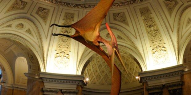 Museum krempelt Image der Saurier um