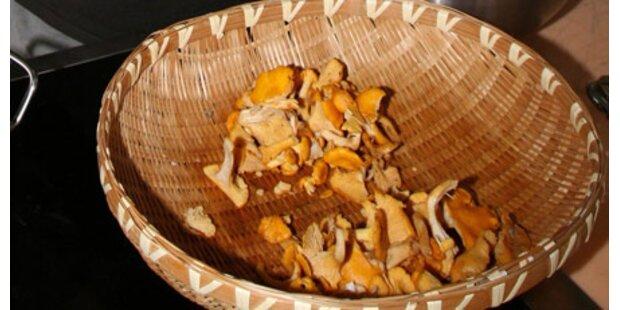SOKO-Pilze startet Jagd auf Diebe