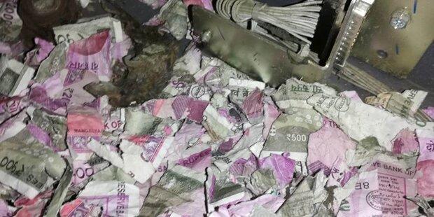 Panische Ratte zerstörte Geld in Bankomat
